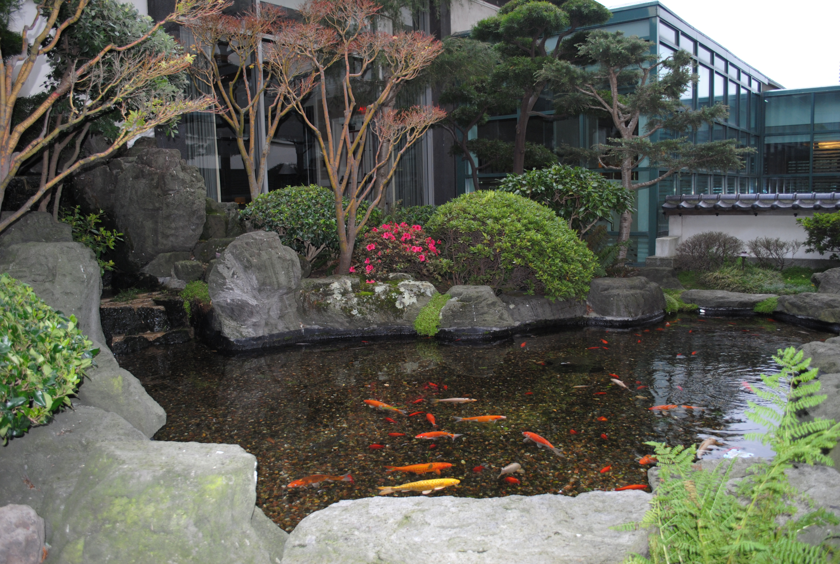 Japanese garden and pond by french bread on deviantart for Your pond japan