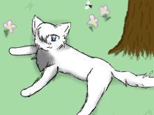 Watermist in a Meadow by Griffin-Kitten