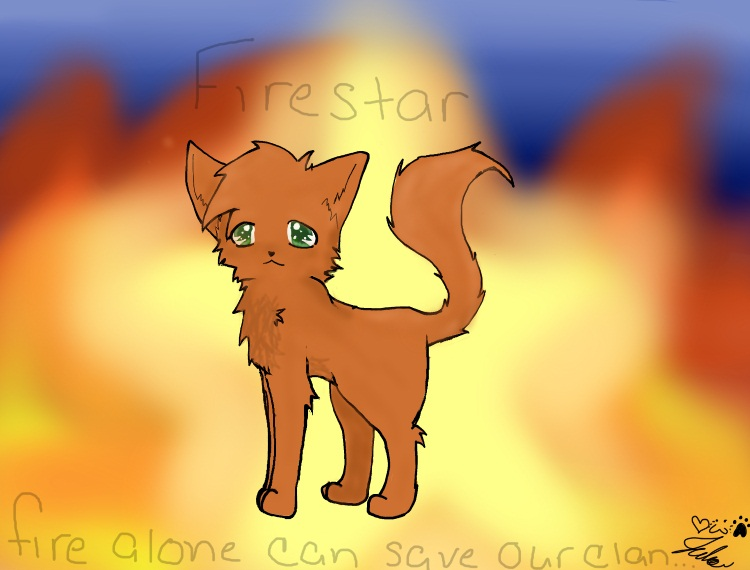 Firestar by Griffin-Kitten