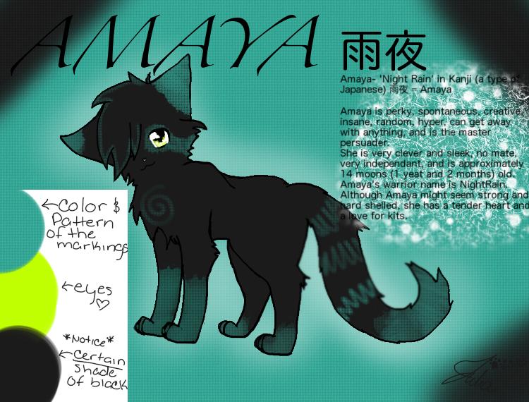 Amaya (Night Rain) Ref by Griffin-Kitten