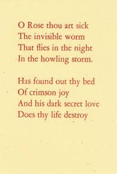 The Sick Rose by Siebrand