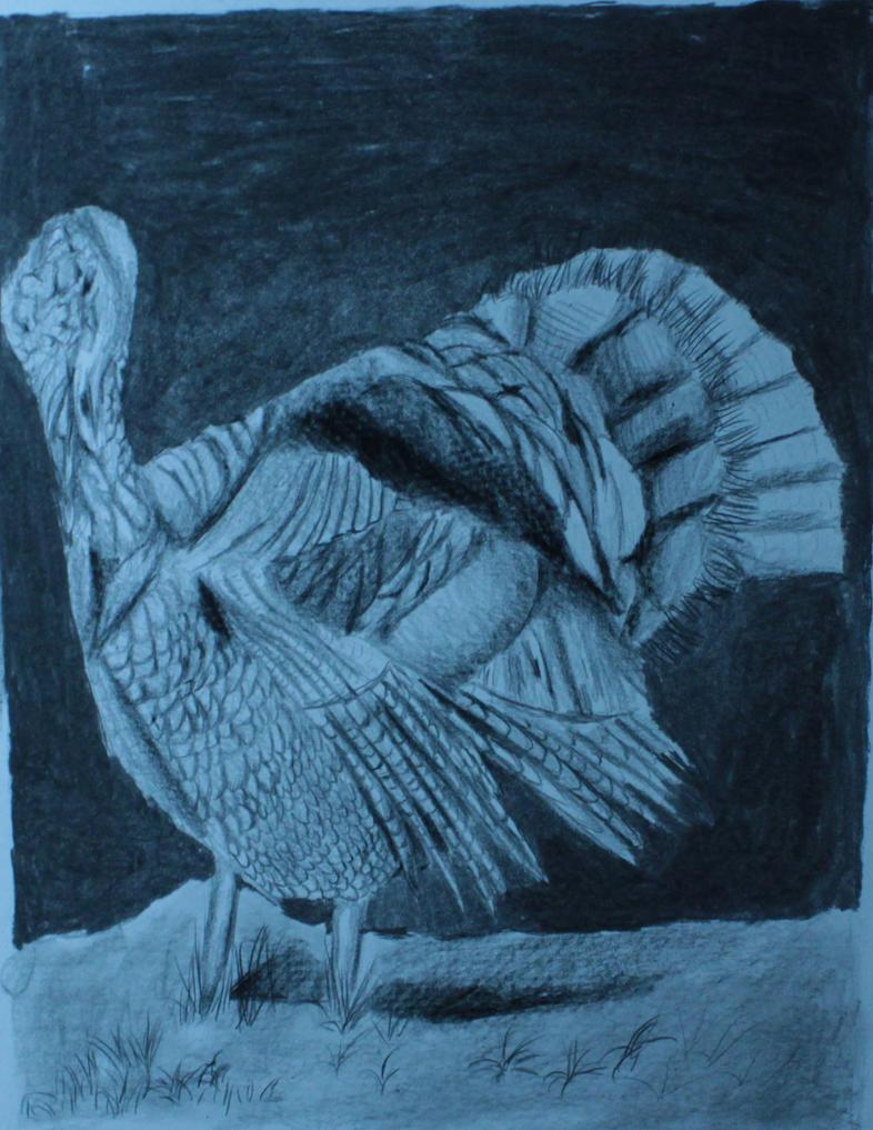 Turky by reaper222ofdarkness