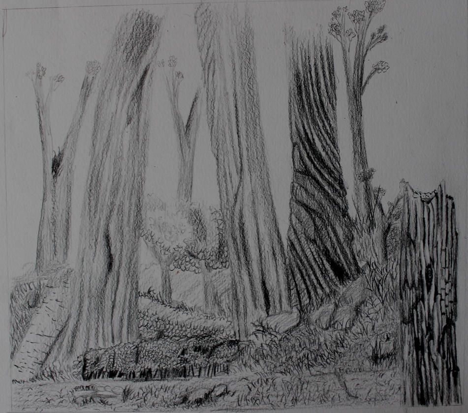 Forest wip by reaper222ofdarkness