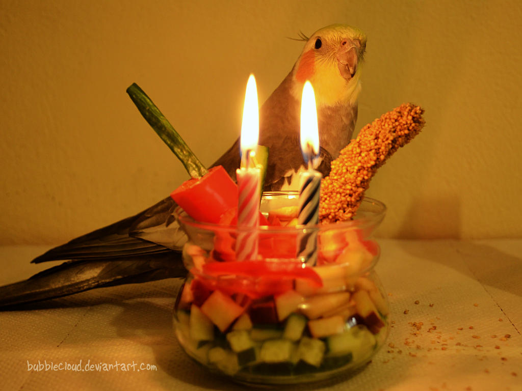Happy 2nd hatchday Loofy!! by BubbleCloud