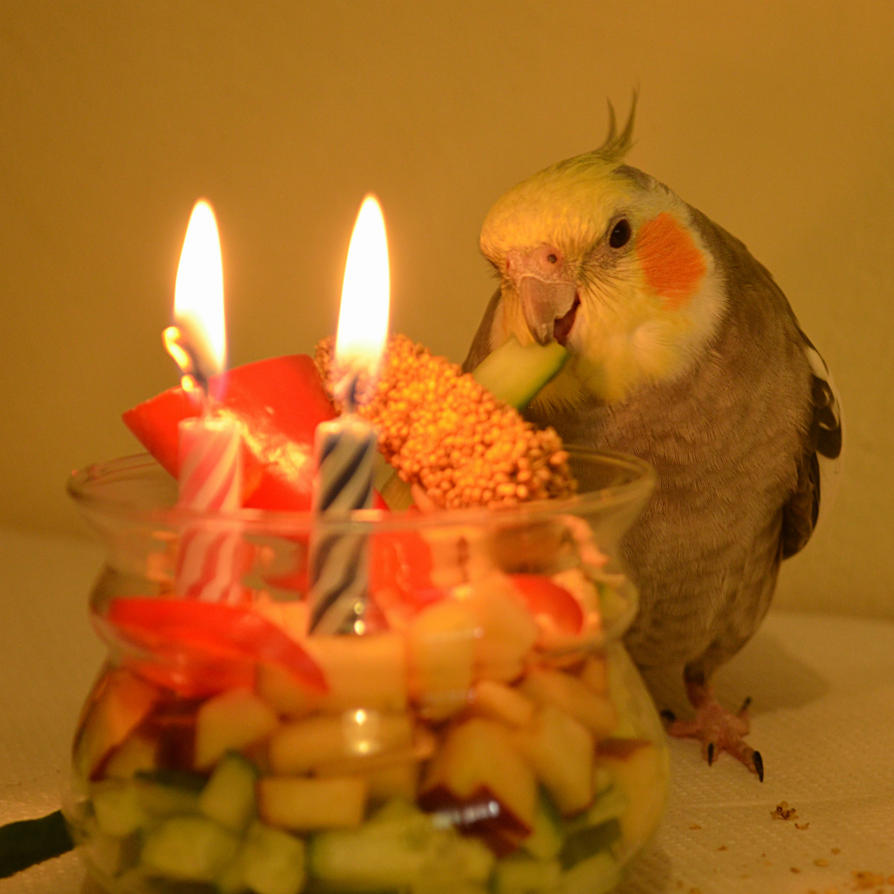 Happy 2nd hatchday Loofy!!!! by BubbleCloud