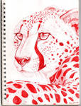 Cheetah in Red