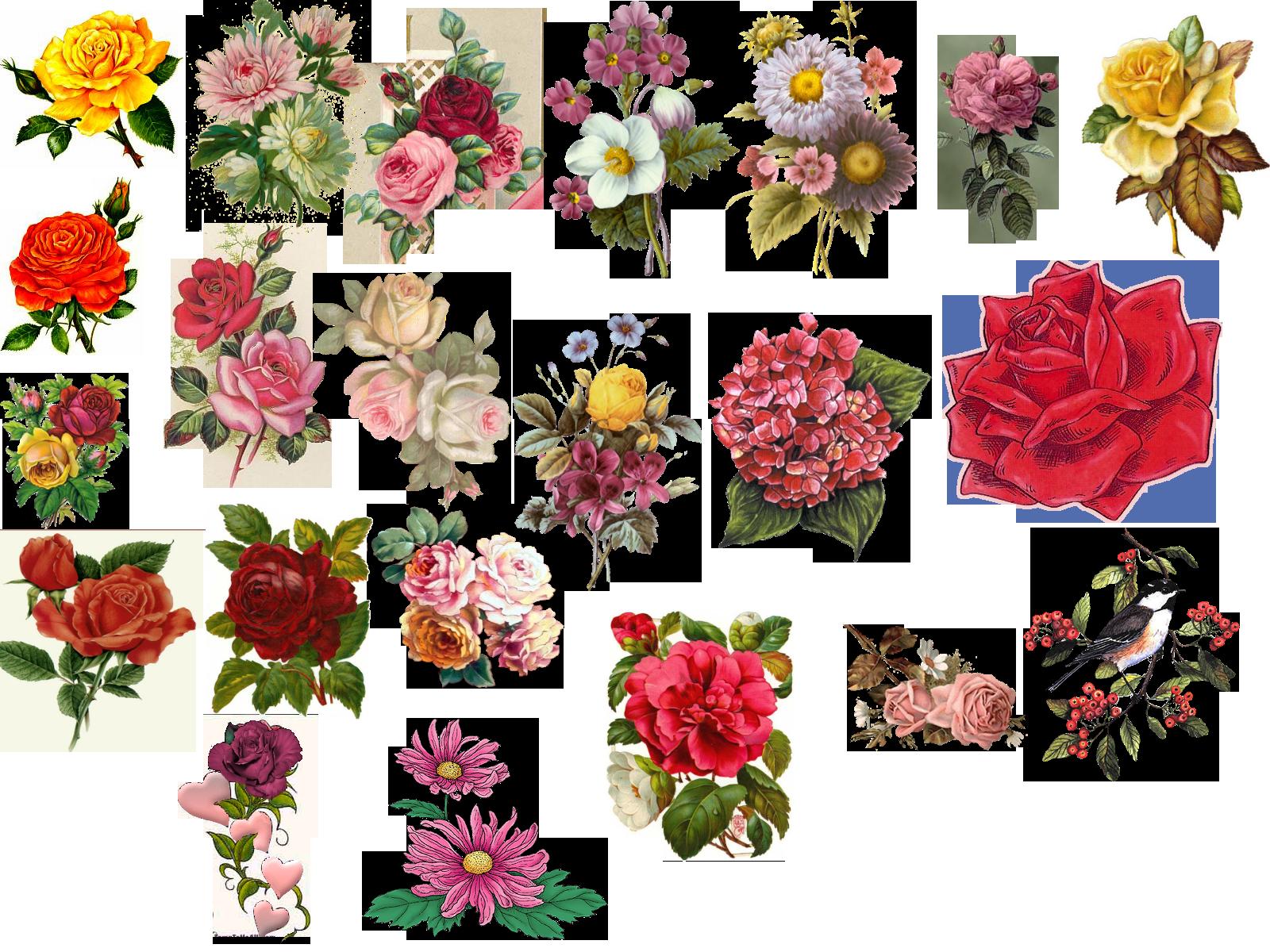 Vintage Flower Picture...