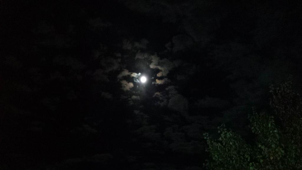 Full Moon by rosebai21