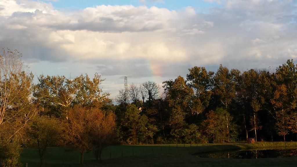 Late Summer Rainbow by rosebai21