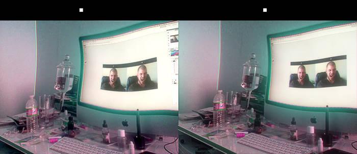 shroomin stereograph
