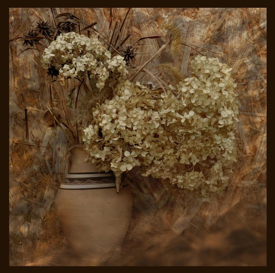 Autumn by m-gosia