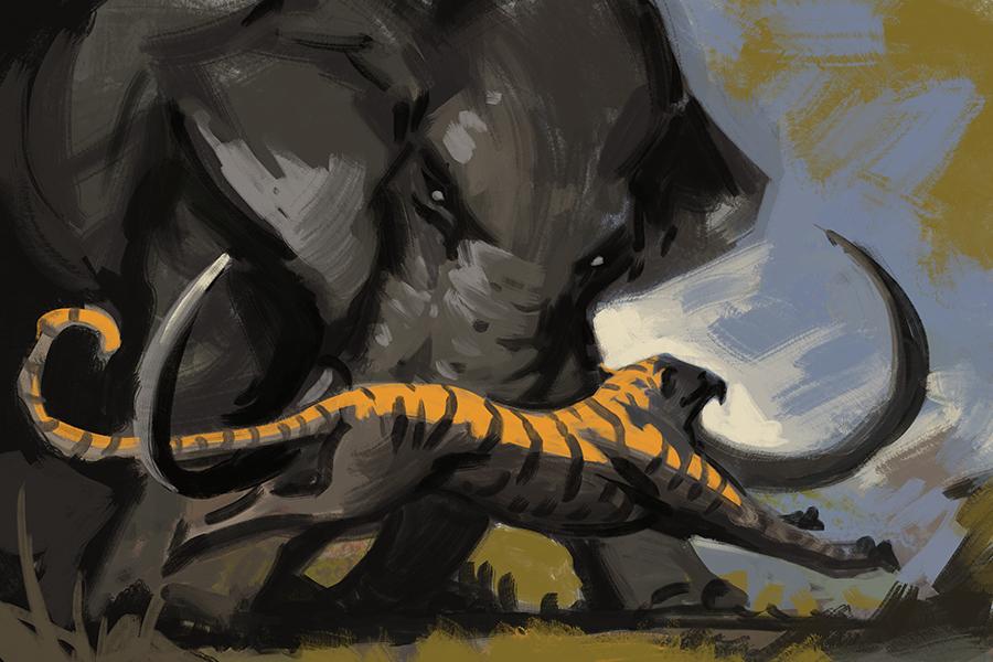 слоны и пантеры картинки дело, заезжал зону