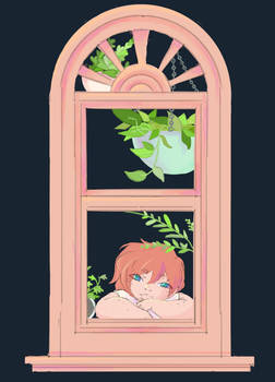 Aphrodite's window