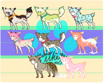 [Cheap point adopts] OPEN