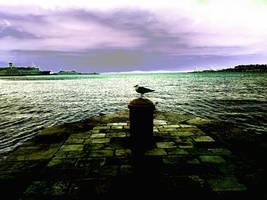 one dream in Split by carrolsmith