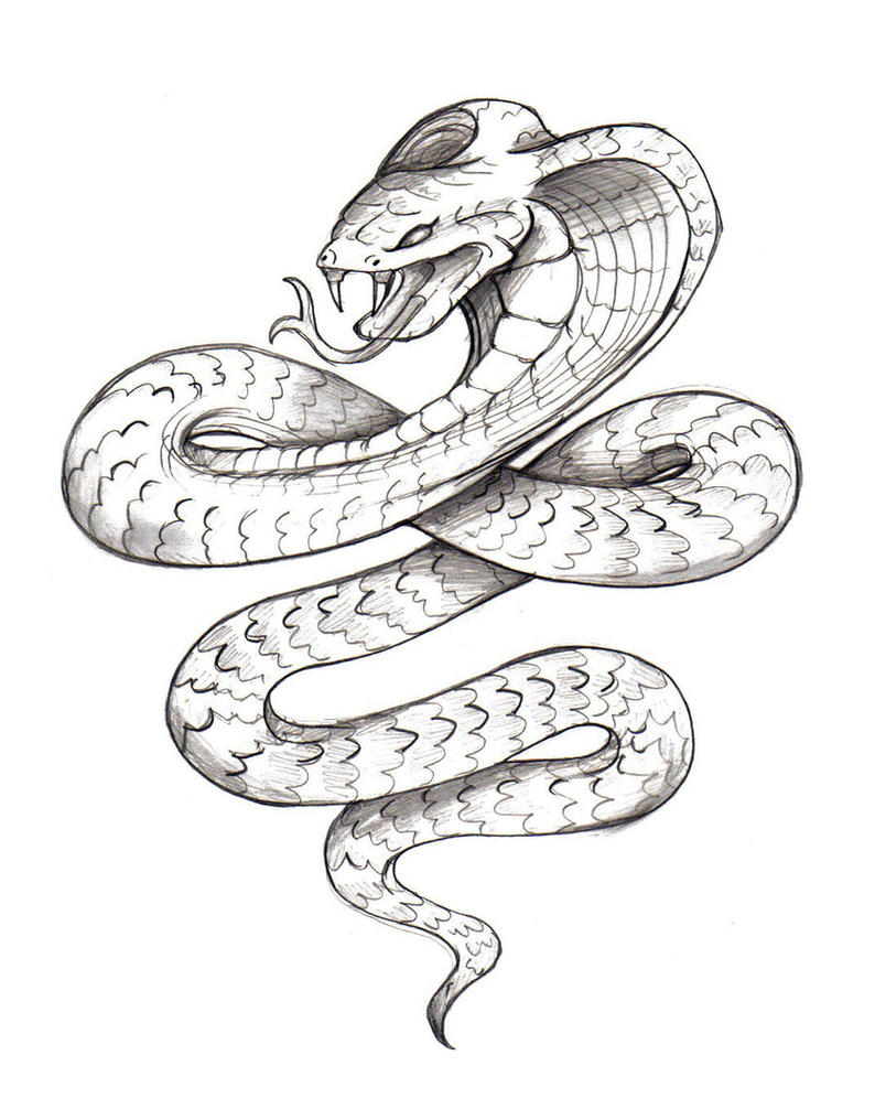 Line Drawing Using Python : Snake tattoo by wolgy on deviantart
