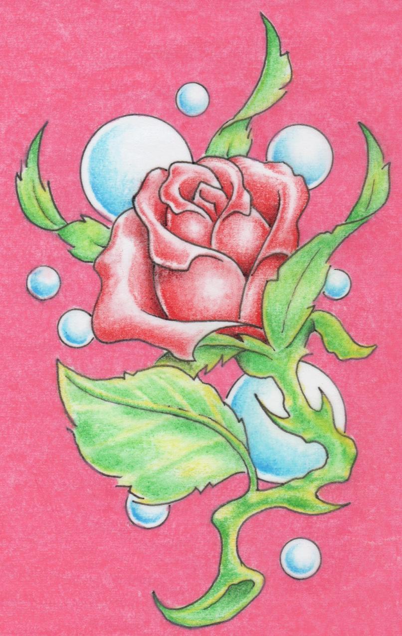 rose in pink by markfellows on deviantart. Black Bedroom Furniture Sets. Home Design Ideas