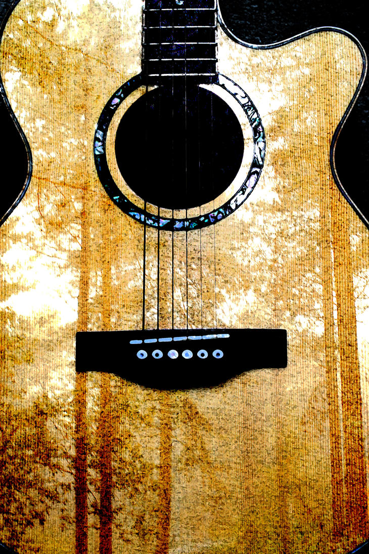 Guitar in the woods by Jhickling