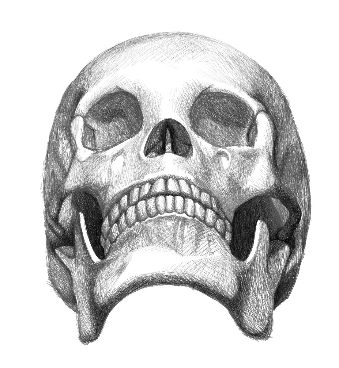 Skull by m3ru