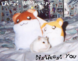 Hamsters 0wnx0rz You by m3ru