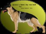 Quincy's Sweet Boy vom ReSK