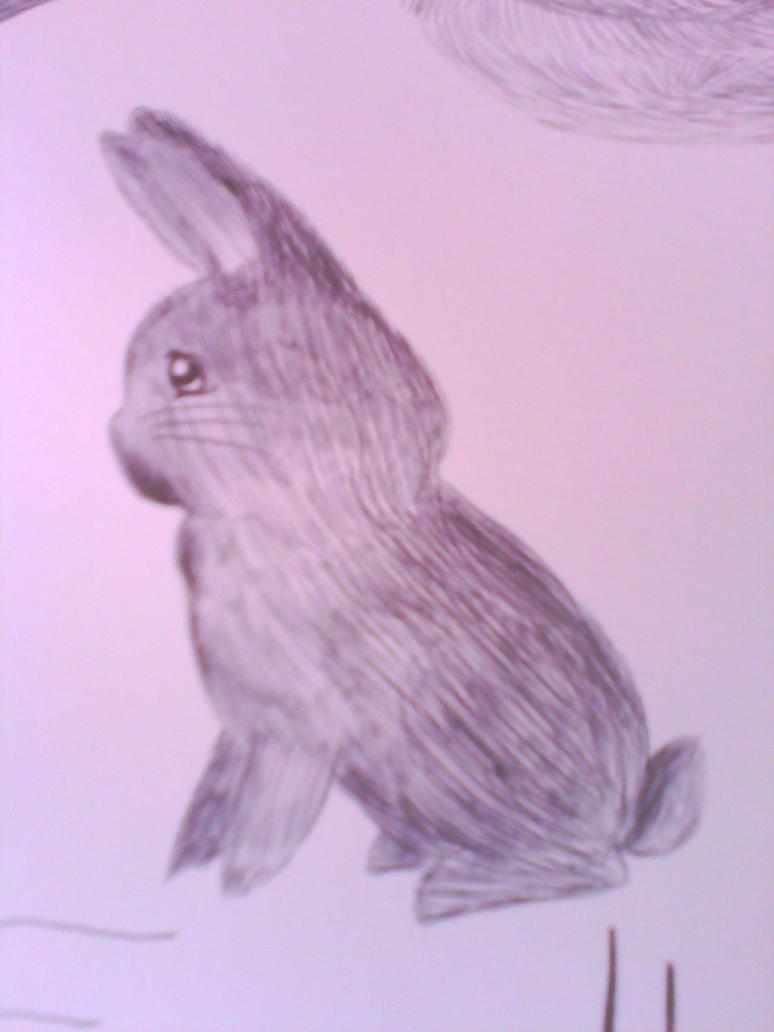 Rabbit 2 by Lilaaku