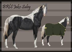 88 BRlS Jake Suley by Pashiino