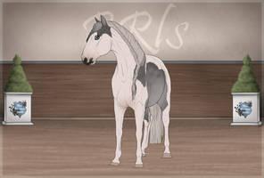 BRlS Ice Dancer #036SS by Pashiino