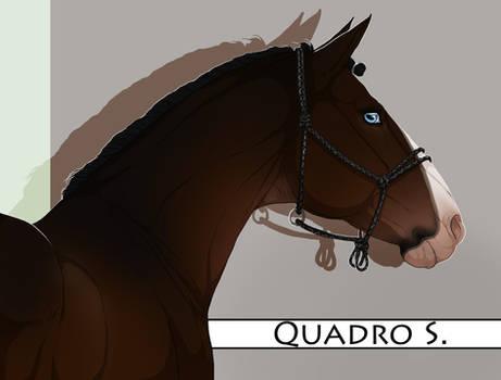 BRlS Quadro S. SOLD