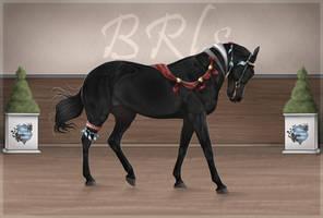 BRlS Thor ZS0027 by Pashiino