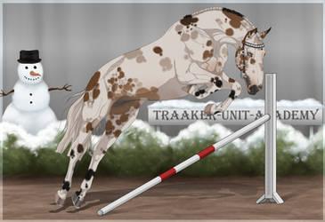 Traaker Import 94 |OPEN| Winter sale by Pashiino