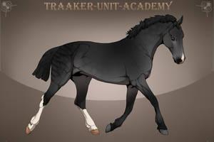 Zeraa Traaker Import | 24 by Pashiino