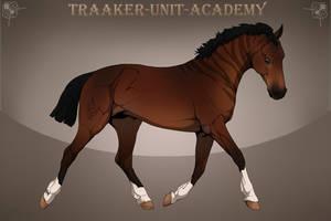 Zeraa Traaker Import | 26 by Pashiino