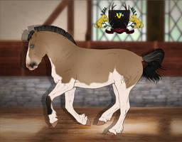 Traaker Pony import 003 | Custom by Pashiino