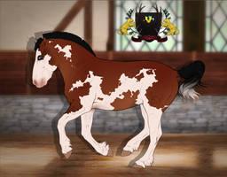 Traaker Pony import 004 | Custom by Pashiino