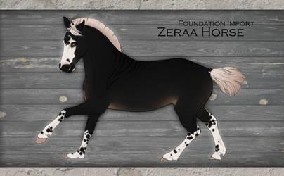 Zeraa import   N#013   9 HOURS LEFT by Pashiino
