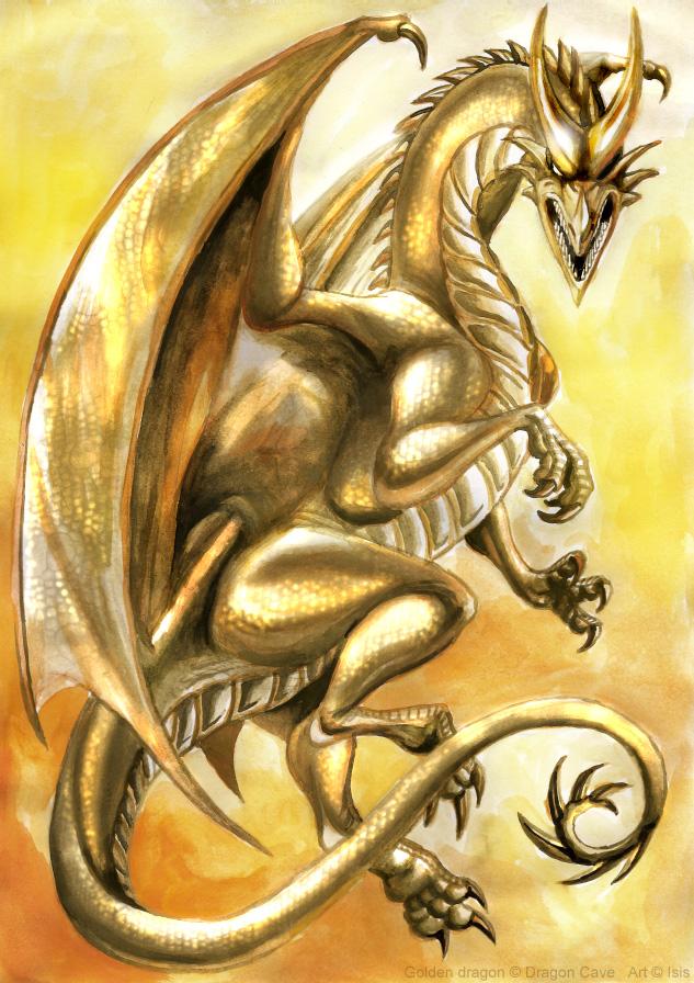 Golden dragon by IsisMasshiro