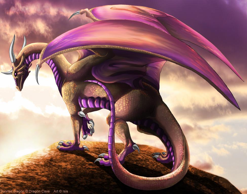 Sunrise dragon by IsisMasshiro