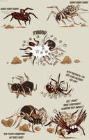 Farce of the spiders
