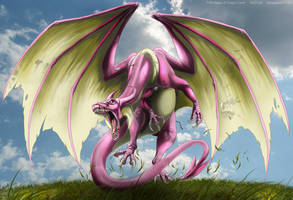Pink dragon by IsisMasshiro