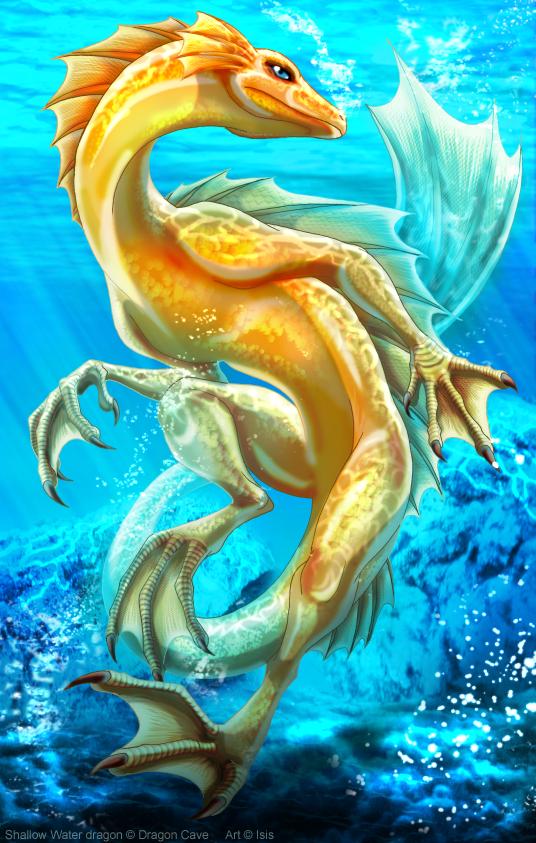 Shallow Water dragon by IsisMasshiro on DeviantArt