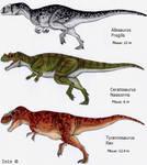 Large carnivores