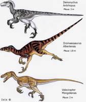 Raptors by IsisMasshiro