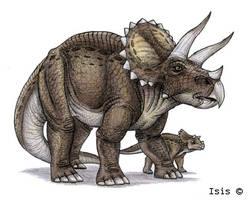 Triceratops by IsisMasshiro