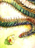 Knight vs. Centipede-Dragon by AjaxTelamoneis