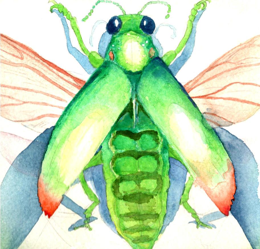 Jewel Beetle by AjaxTelamoneis