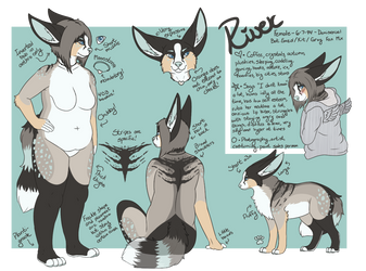 [2016] River Reference Sheet