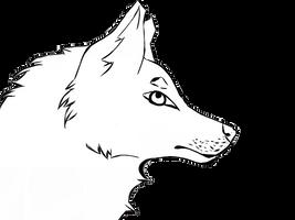 WolfHeadshot1