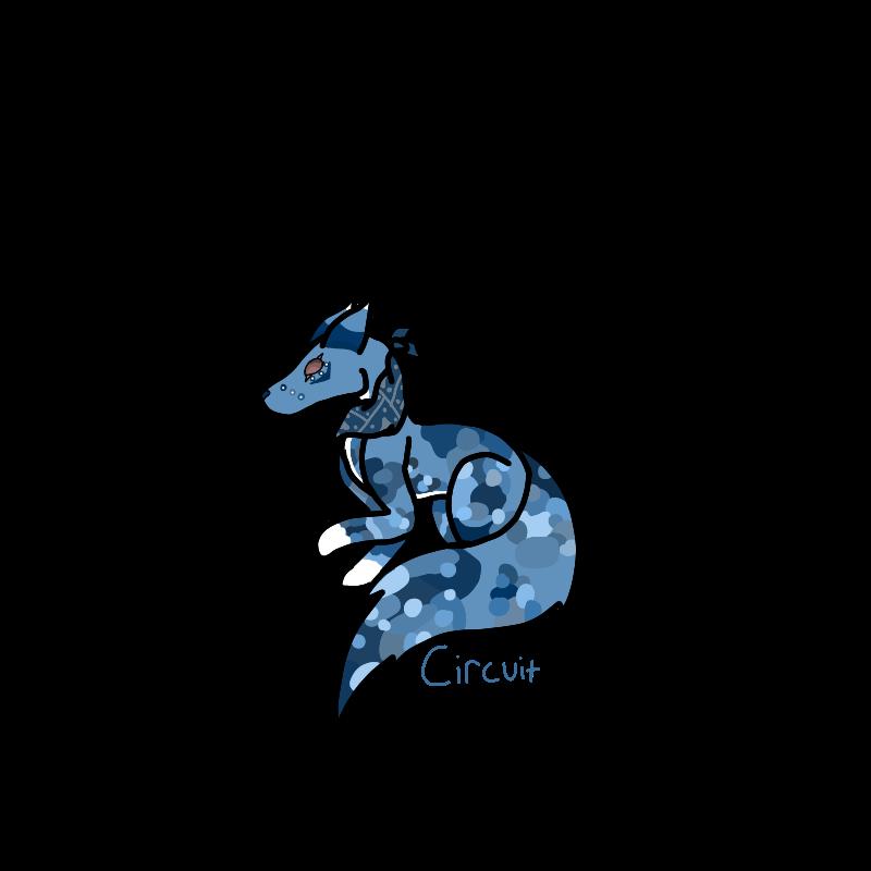 Circuit by CreekyCreek26