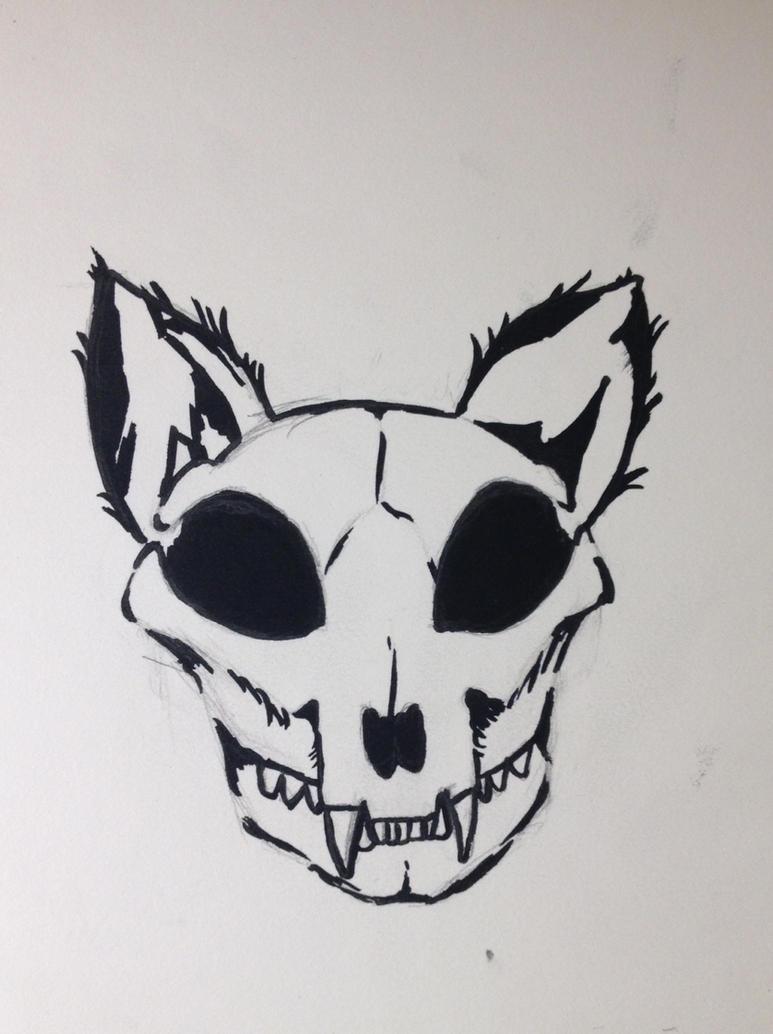 Cat skull by finelinerkid